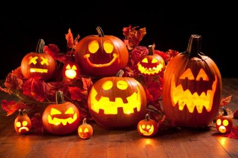 561ece4e681d4-pumpkins-3
